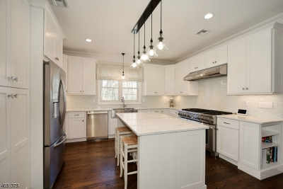 Madison Boro Single Family Home For Sale: 25 Parkside Ave