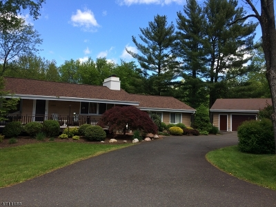 Bridgewater Twp. Single Family Home For Sale: 1325 Tullo Rd