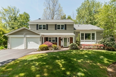 Berkeley Heights Twp. Single Family Home For Sale: 200 Lorraine Drive