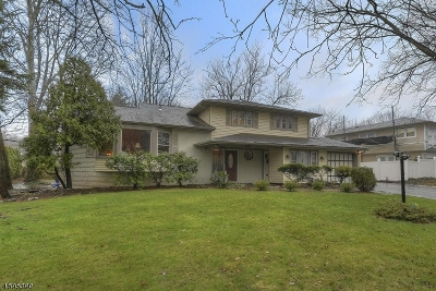 Springfield Twp. Single Family Home For Sale: 400 Milltown Rd