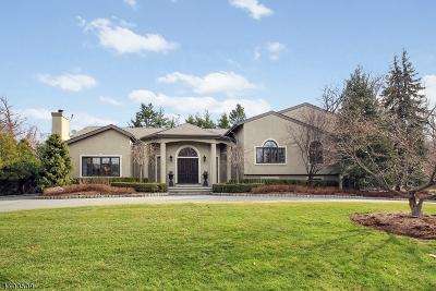 Livingston Twp. Single Family Home For Sale: 22 Ross Road