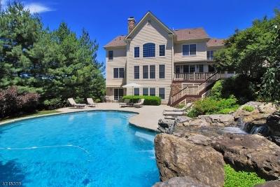 Livingston Twp. Single Family Home For Sale: 2 Sunshine Ln