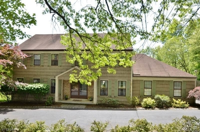 Morris Twp. Single Family Home For Sale: 7 Deer Chase Rd
