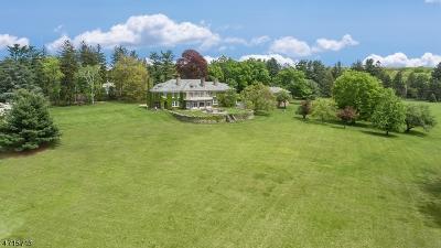 Bernardsville Boro Single Family Home For Sale: 31 Peachcroft Dr