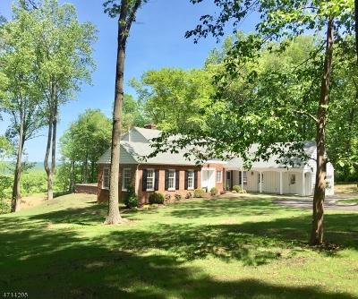 Bernardsville Boro Single Family Home For Sale: 65 Peachcroft Dr