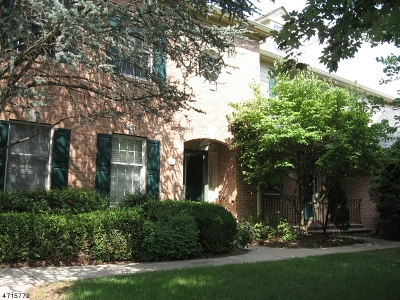 Morris Twp. Condo/Townhouse For Sale: 29 Pippins Way #29