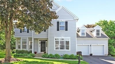 Bernards Twp. Single Family Home For Sale: 41 Liberty Ridge Rd