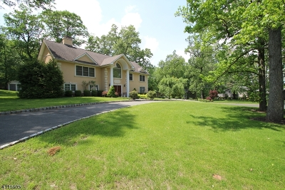 Springfield Twp. Single Family Home For Sale: 26 Green Hill Rd