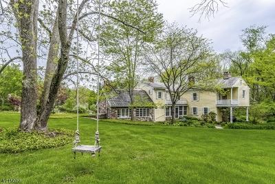 Alexandria Twp. Single Family Home For Sale: 95 Mount Salem Rd