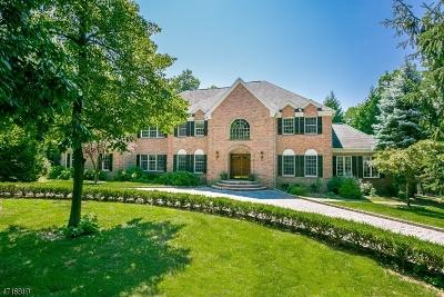 Bernardsville Boro Single Family Home For Sale: 14 Charlotte Hill Dr