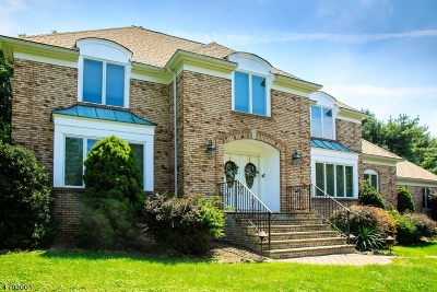 Morris Twp. Single Family Home For Sale: 70 Ketch Rd