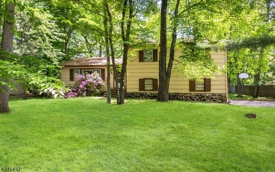 Livingston Twp. Single Family Home For Sale: 36 Knollwood Dr