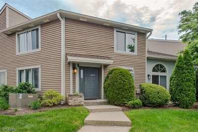 Springfield Twp. Condo/Townhouse For Sale: 955 S Springfield Ave, C315