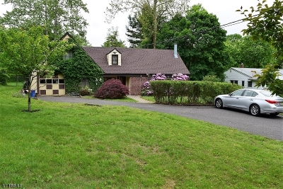 Bridgewater Twp. Single Family Home For Sale: 1384 Mount Vernon Rd