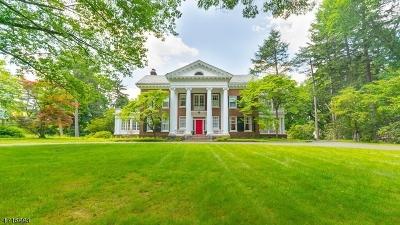 Plainfield City Single Family Home For Sale: 980 Hillside Ave