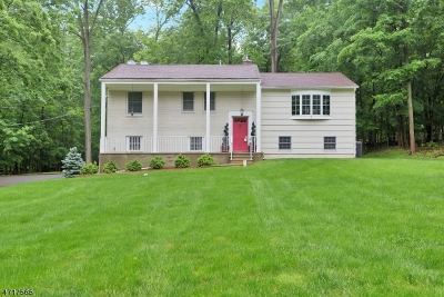 Warren Twp. Single Family Home For Sale: 4 Star Dust Dr