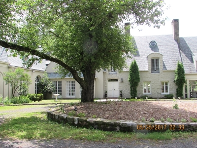 Bernardsville Boro Single Family Home For Sale: 151 Ravine Lake Rd