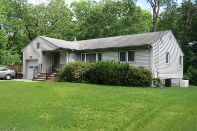 Piscataway Twp. Single Family Home For Sale: 79 Woodland Rd