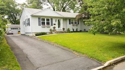 East Brunswick Twp. Single Family Home For Sale: 51 Fairfield Rd