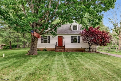 Bridgewater Twp. Single Family Home For Sale: 552 Foothill Rd