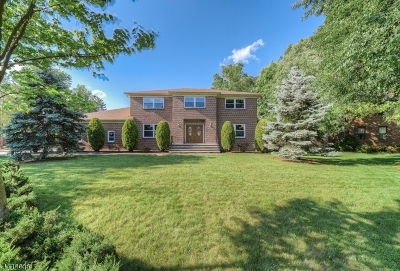Florham Park Boro Single Family Home Active Under Contract: 11 Pheasant Way