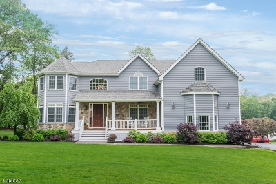 Denville Twp. Single Family Home For Sale: 9 Berdone Ct
