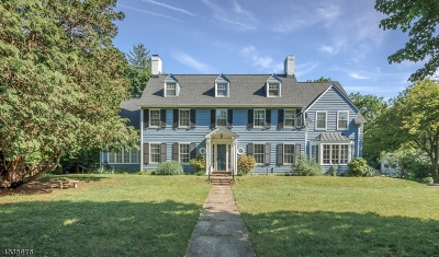 Plainfield City Single Family Home For Sale: 432 Stelle Ave