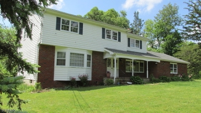 Bridgewater Twp. Single Family Home For Sale: 781 Chimney Rock Rd