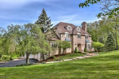Bernardsville Boro Single Family Home For Sale: 87 Skyline Dr