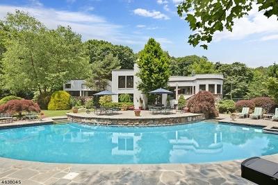 Bernardsville Boro Single Family Home For Sale: 289-2 Mt Harmony Rd