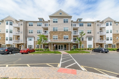 Piscataway Twp. Condo/Townhouse For Sale: 447 Tower Blvd