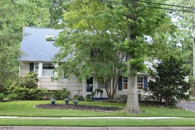 Edison Twp. Single Family Home For Sale: 22 Meyer Rd