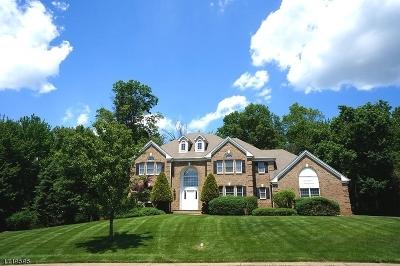 Bridgewater Twp. Single Family Home For Sale: 3 Yohn Dr