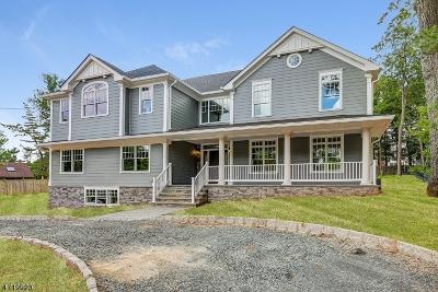 Livingston Twp. Single Family Home For Sale: 11 N Hillside Ave
