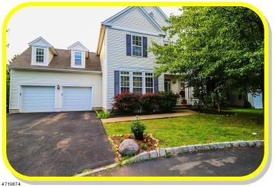 Bernards Twp. Single Family Home For Sale: 19 Honeyman Road