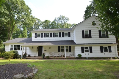 Morris Plains Boro Single Family Home For Sale: 9 Beech Dr