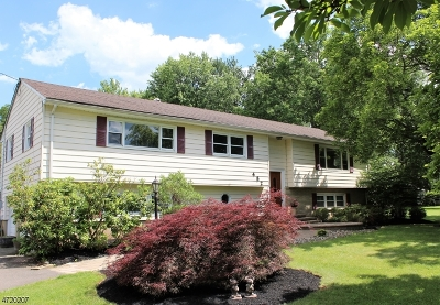 Bridgewater Twp. Single Family Home For Sale: 482 Meadow Rd