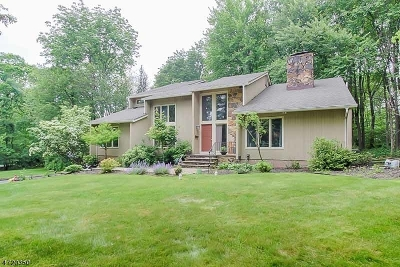 Randolph Twp. Single Family Home For Sale: 16 Old Wood Ln