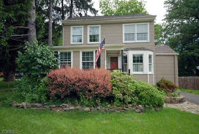 Warren Twp. Single Family Home For Sale: 42 Fairfield Ave