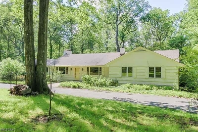 Morris Twp. Single Family Home For Sale: 8 Old Army Post Rd