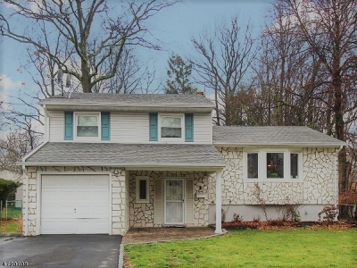 Fanwood Boro Single Family Home For Sale: 1 Morse Ave
