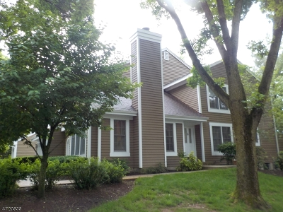Bedminster Twp. Condo/Townhouse For Sale: 64 Stone Run Rd