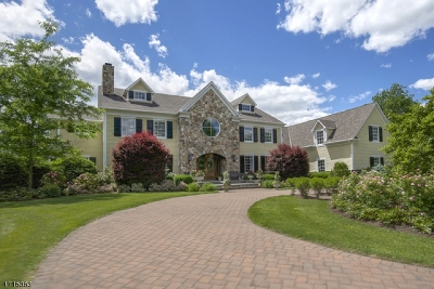 Bedminster Twp. NJ Single Family Home For Sale: $2,695,000