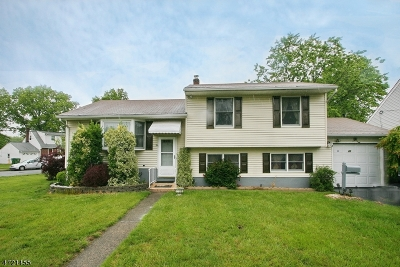 Edison Twp. Single Family Home For Sale: 21 Deerwood Ave