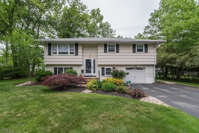 Edison Twp. Single Family Home For Sale: 236 W Sherman Ave