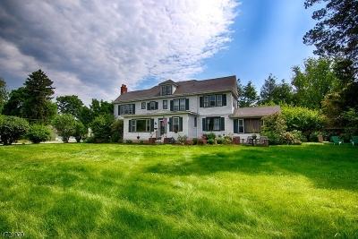Bernardsville Boro Single Family Home For Sale: 56 Mount Airy Rd