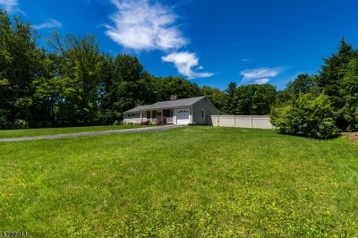Bernards Twp. Single Family Home For Sale: 407 Mount Airy Rd