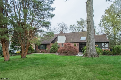 Florham Park Boro Single Family Home For Sale: 280 Brooklake Rd