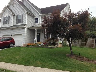 Bridgewater Twp. Single Family Home For Sale: 18 Reinhart Way