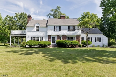 Woodbridge Twp. Single Family Home For Sale: 366 New Dover Rd